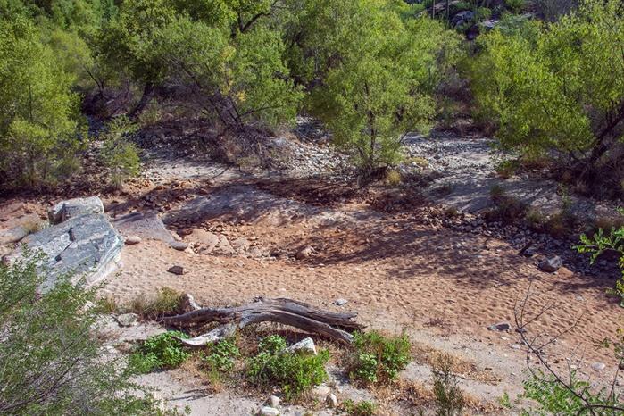 Sabino Creek (1 of 1) blog