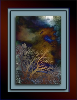 Shadows and Sun (1 of 1) art blog