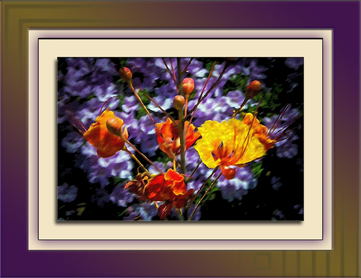Yard Flowers (1 of 1)-2 art blog
