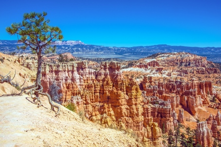bryce-canyon-snapshots-1-of-1-12-blog