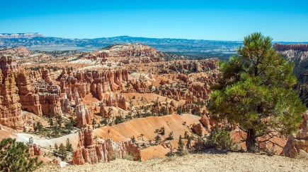 bryce-canyon-snapshots-1-of-1-6-blog