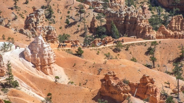 bryce-canyon-snapshots-1-of-1-7-blog