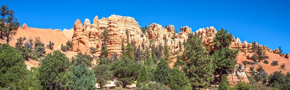 bryce-canyon-snapshots-1-of-1-blog