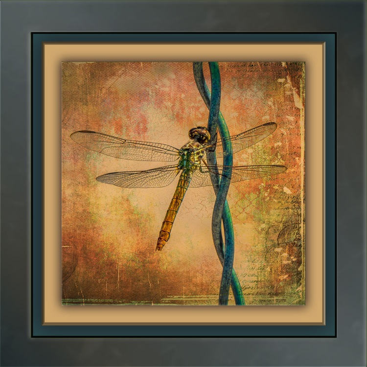 dragonfly-art-blog