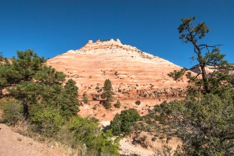 zion-snapshots-1-of-1-15-blog