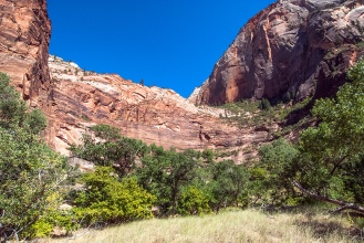 zion-snapshots-1-of-1-5-blog