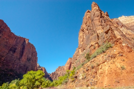 zion-snapshots-1-of-1-9-blog