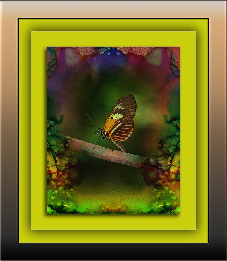 butterfly-1-of-1-9-art-3-blog
