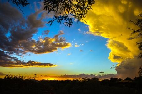 sunset-1-of-1-7-blog