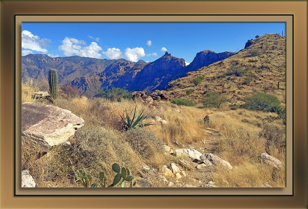 blacketts-ridge-trail-timble-peak-blog