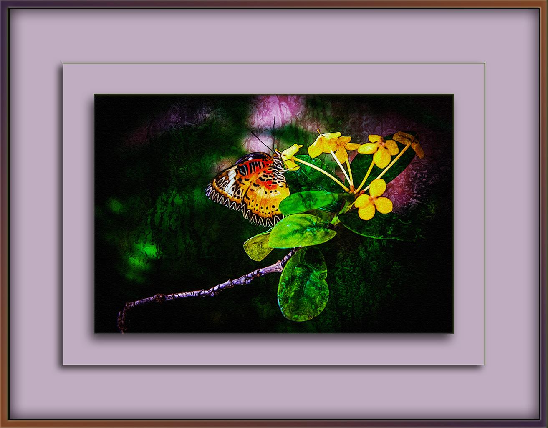 butterfly-1-of-1-2-art-ii-blog