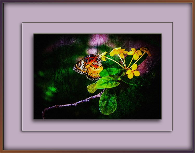 butterfly-1-of-1-2-art-ii-blog