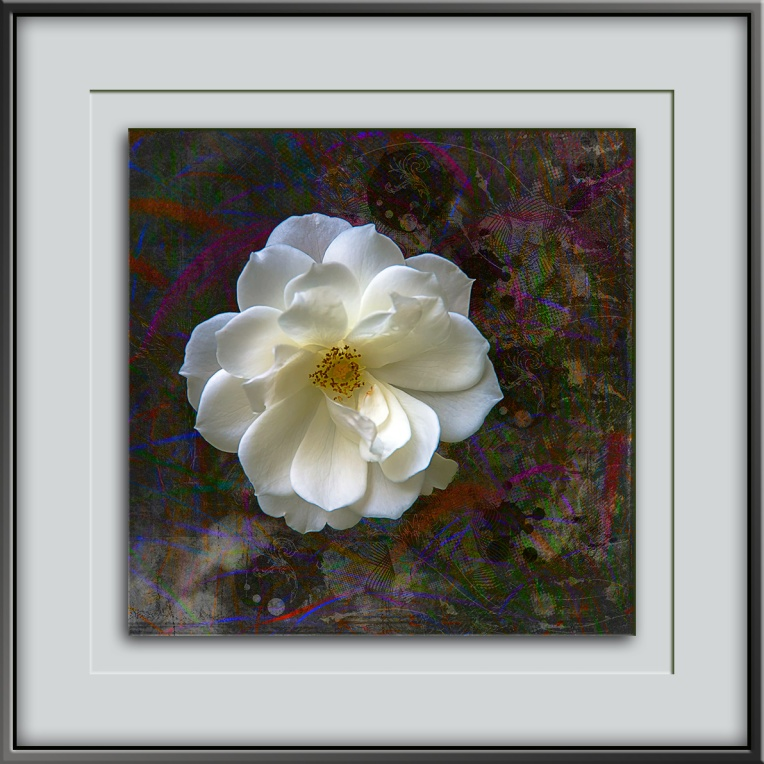gardenia-art-iii-blog-ii