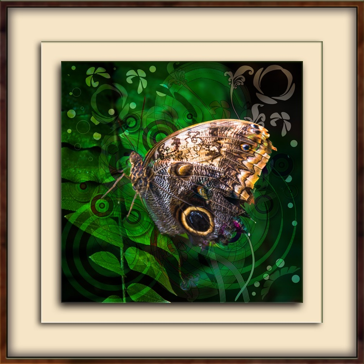 giant-owl-butterfly-1-of-1-art-blog