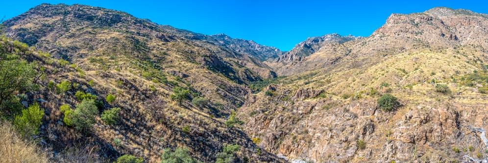 Upper Sabino Canyon Panorama