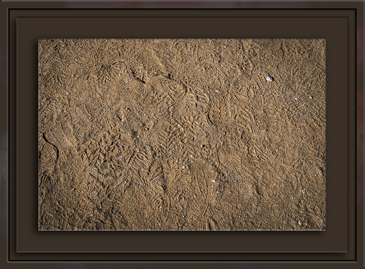 footprints-0179-blog-ii