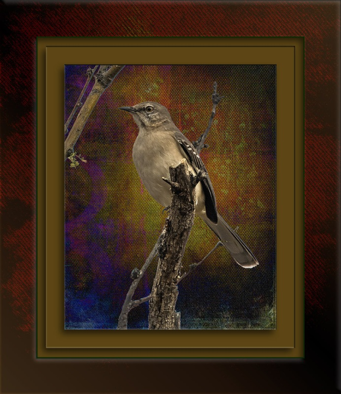mockingbird-0301-art-blog