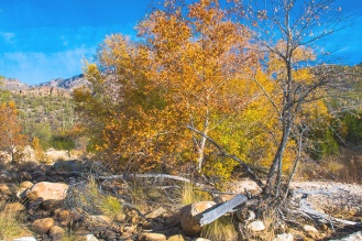sabino-fall-colors-0144-blog