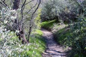 Pima Canyon 01-27-17