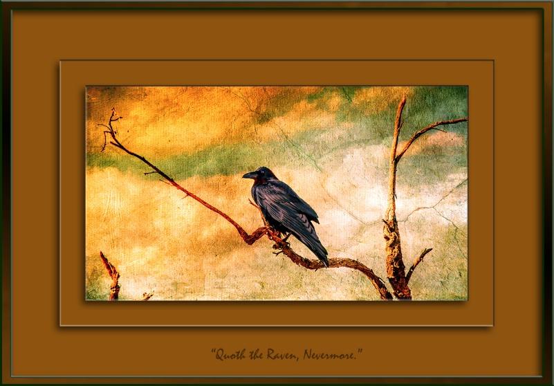 raven-0471-2-art-blog-ii