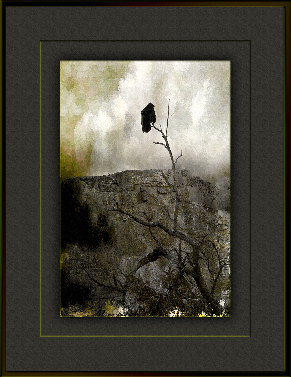 scvn-nature-walk-01-18-12-raven-art-blog-ii