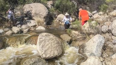 hutchs-pool-img_3012-creek-blog