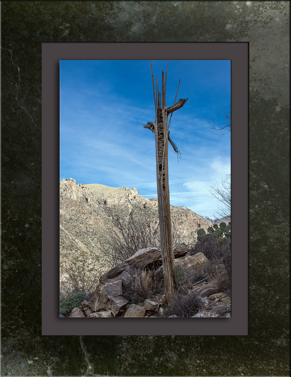 phoneline-trail-0629-blog-framed