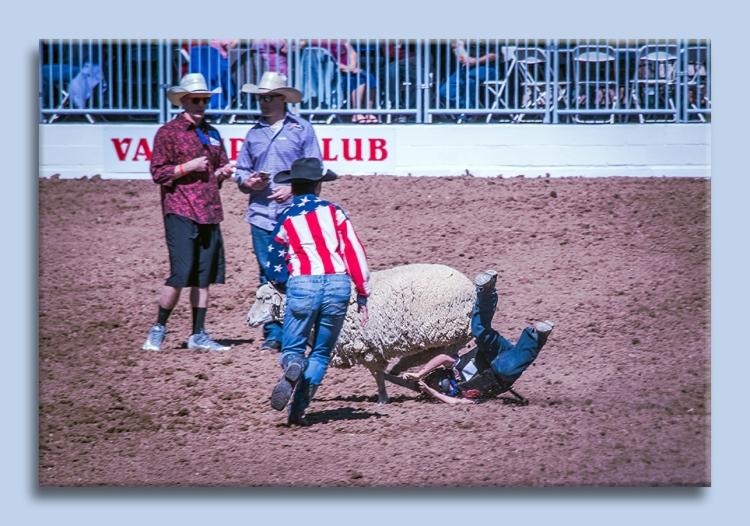 rodeo-2017-0697-ram-mutton-bustin-blog