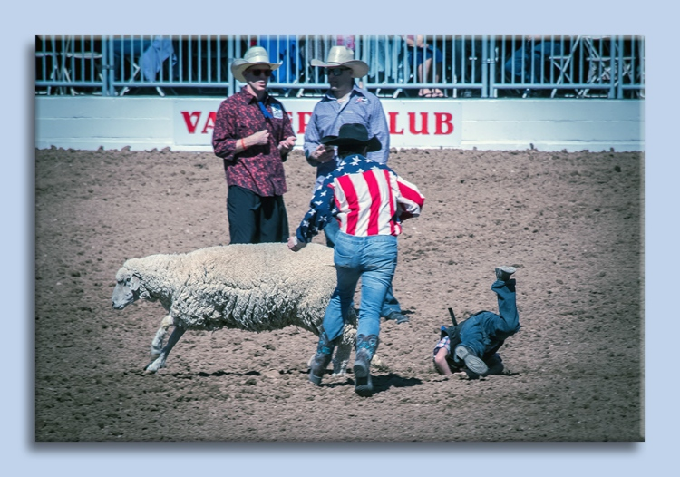 rodeo-2017-0698-ram-mutton-bustin-blog