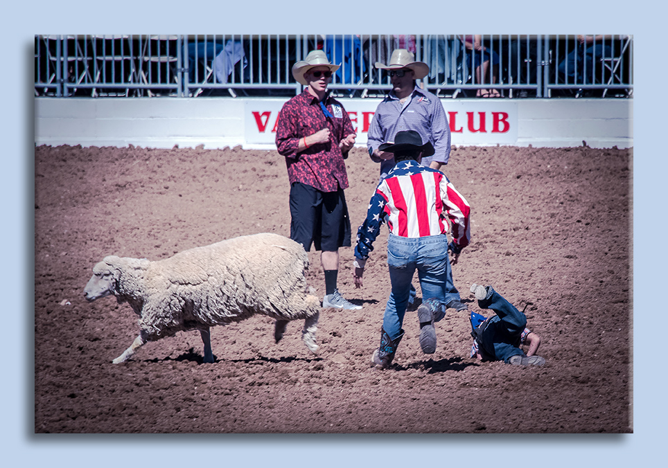 rodeo-2017-0699-ram-mutton-bustin-blog
