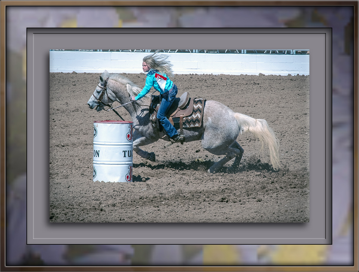 rodeo-2017-0726-blog