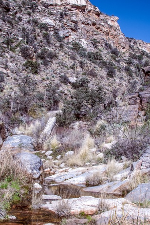 ventana-canyon-hike-0682-blog