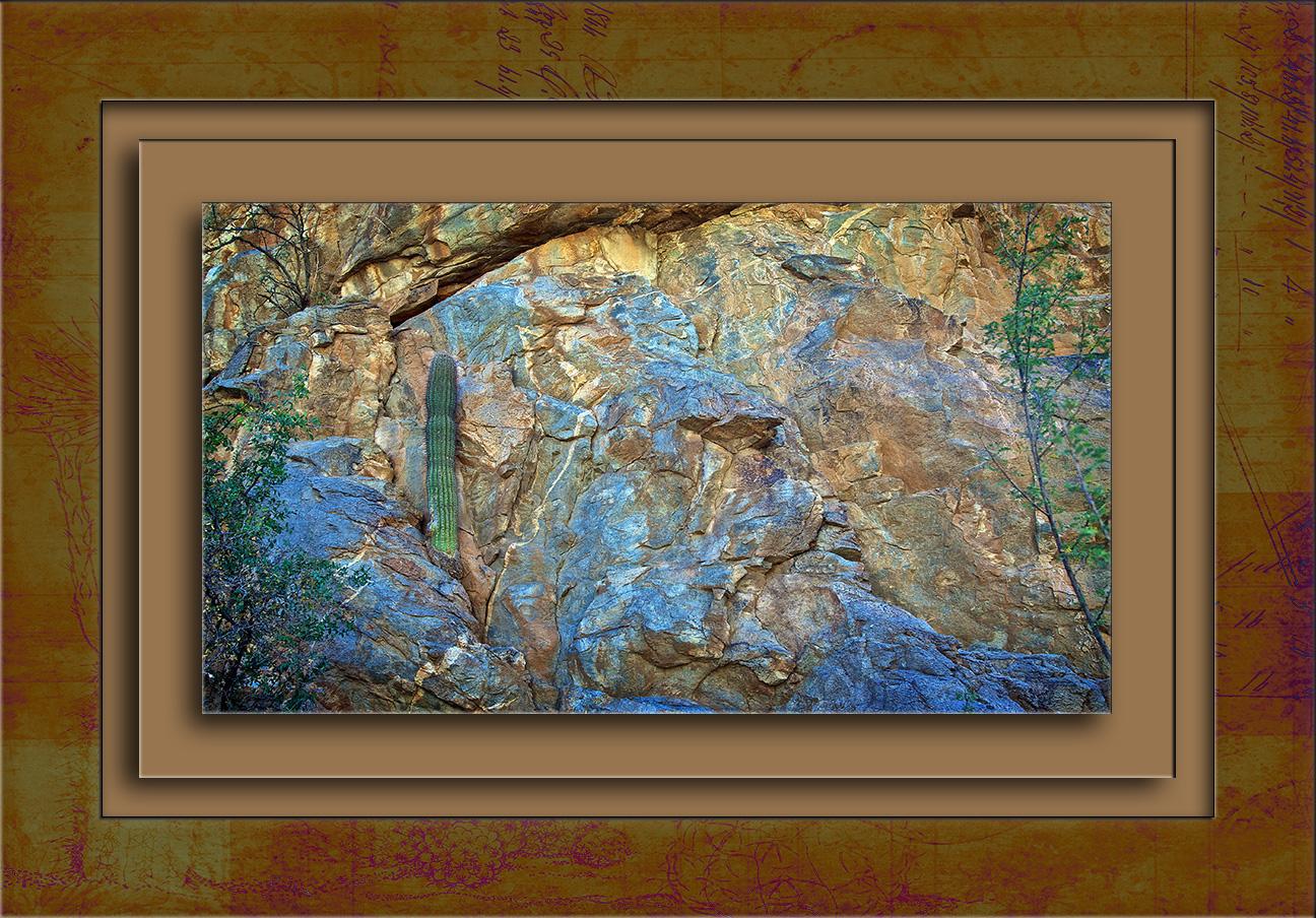 Wild Burro Canyon Hike