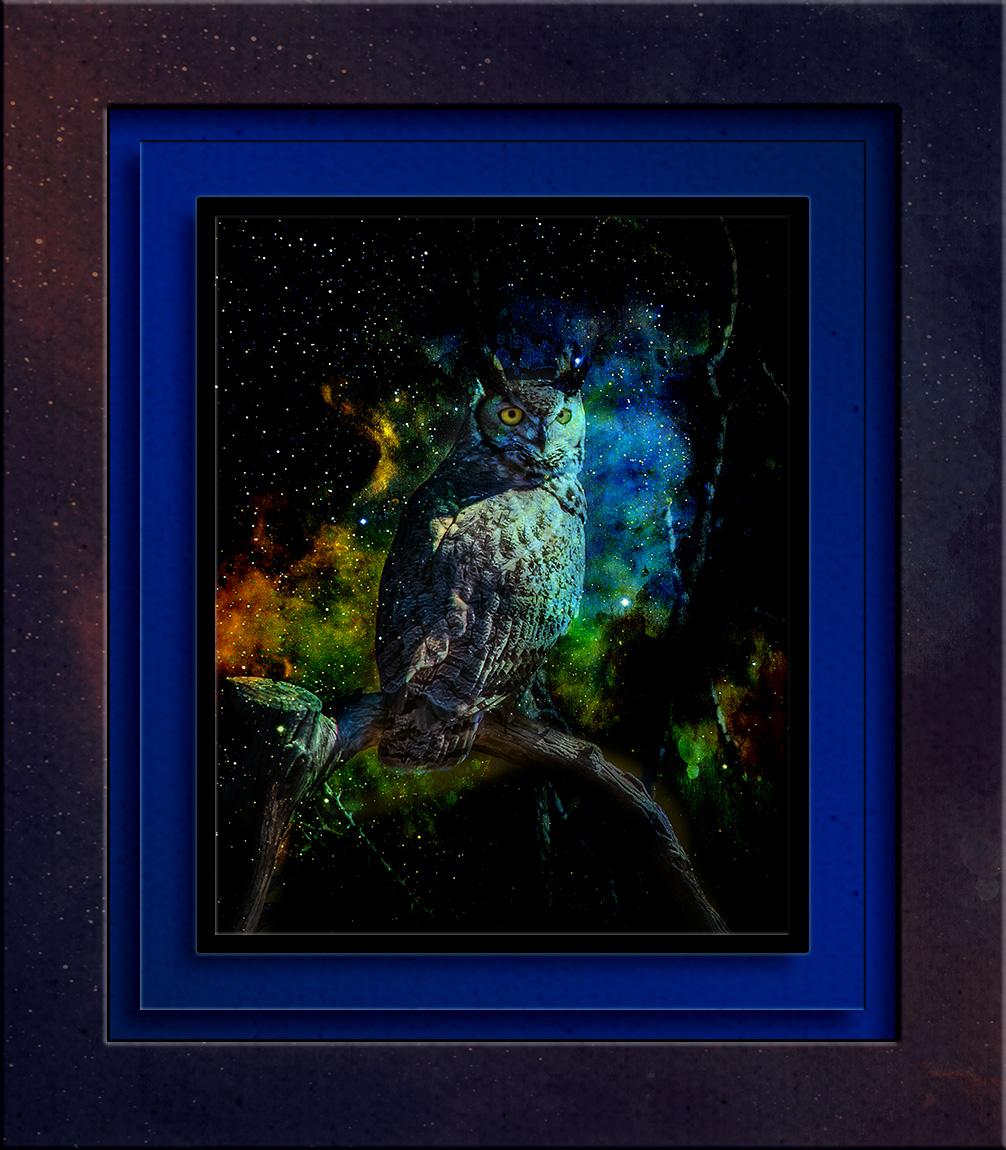 Great Horn Owl-1020 grunge Art blog