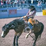 rodeo-2017-0731-blog