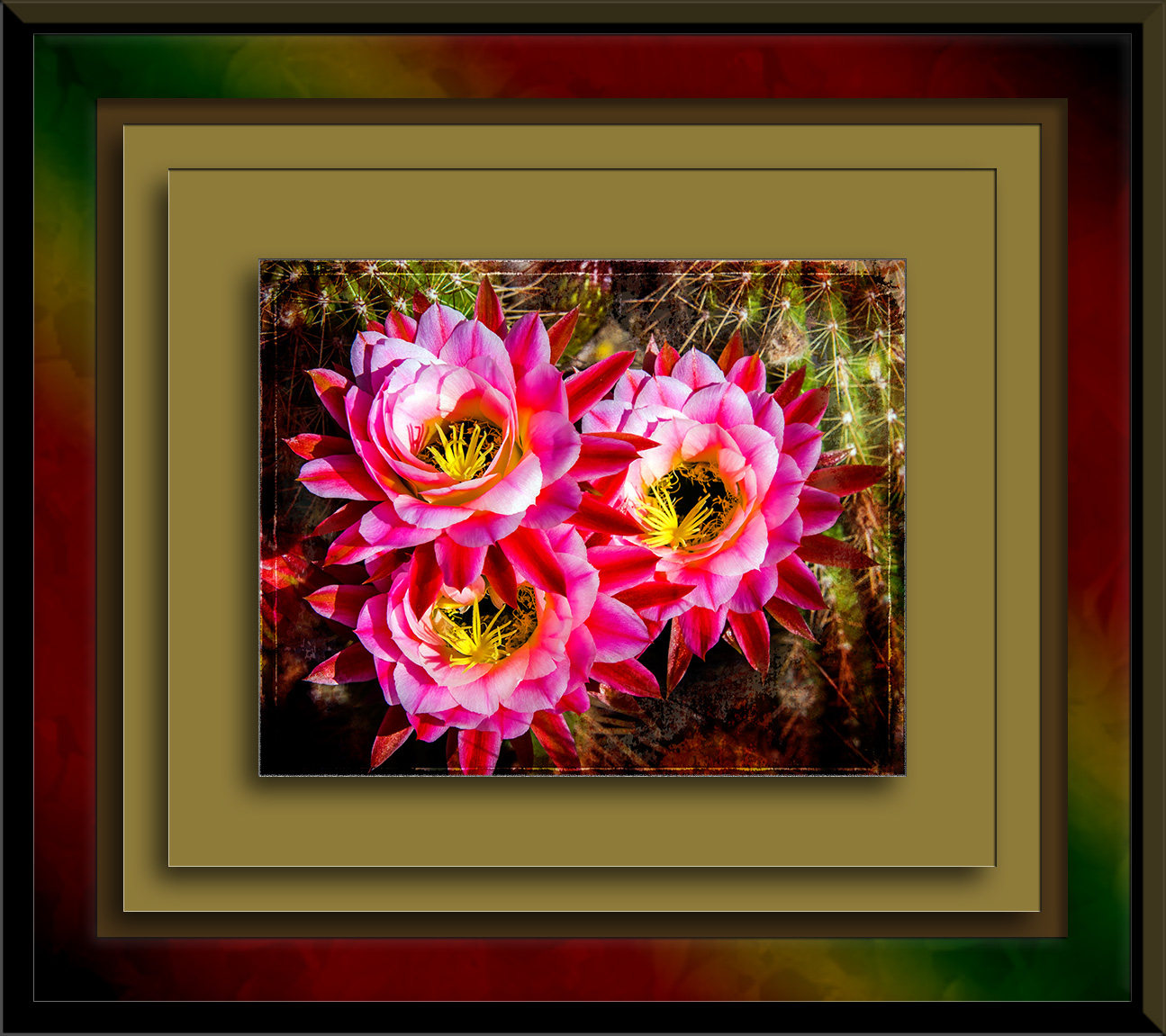 April Cactus Flowers-1122 art blog