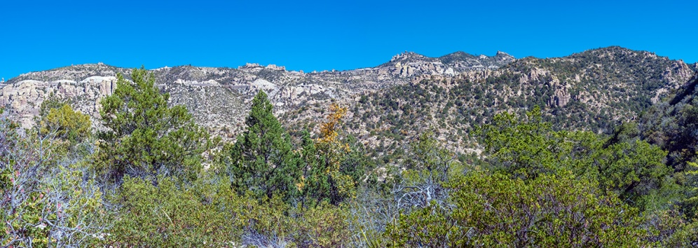 Bug Springs Trail Panorama--2 blog
