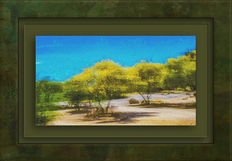 Palo Verde Blossoms-1145 Camera Motion Art II blog