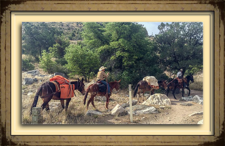 Riding the Arizona Trail -2 blog