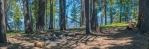 Camp Area panorama on Mt. Lemmon-blog