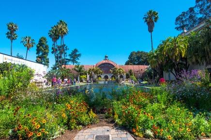 Balboa Park Flowers-2777 blog