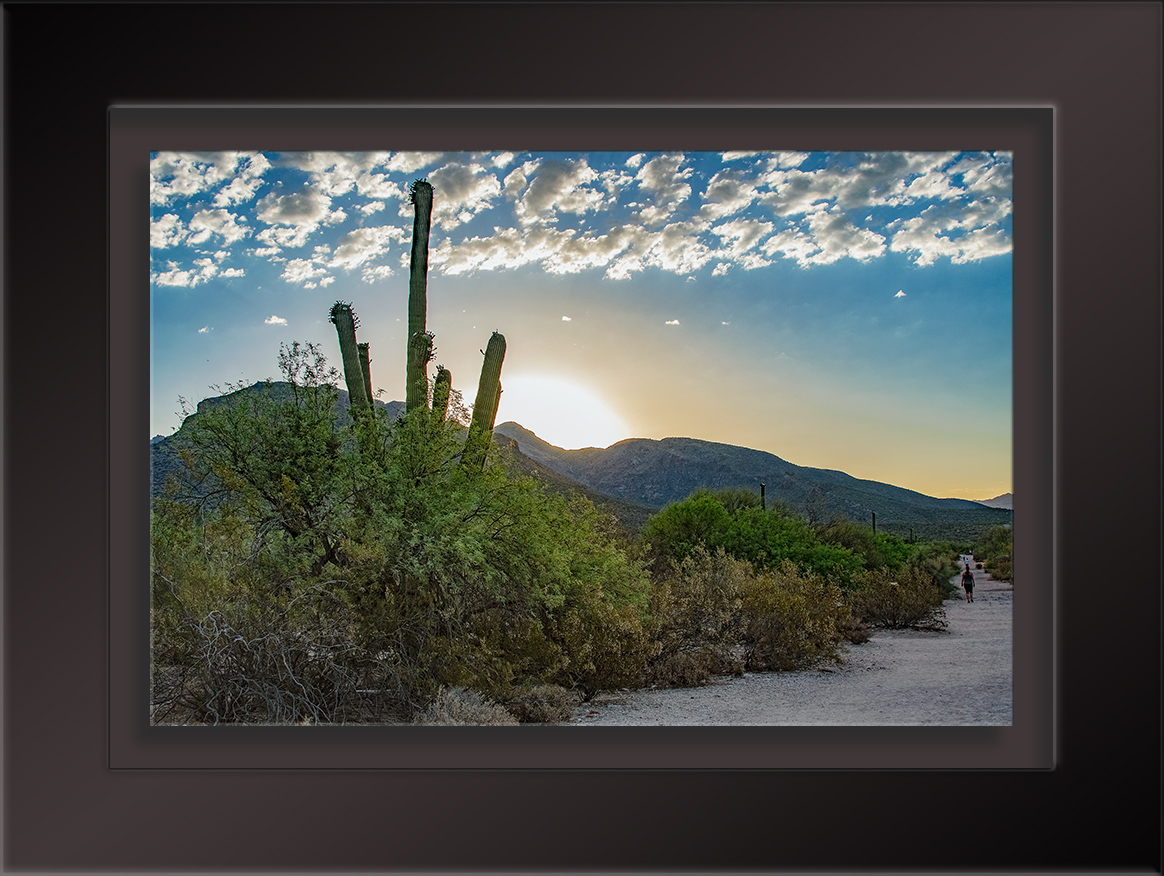 Sabino Canyon Sunrise-1702 blog