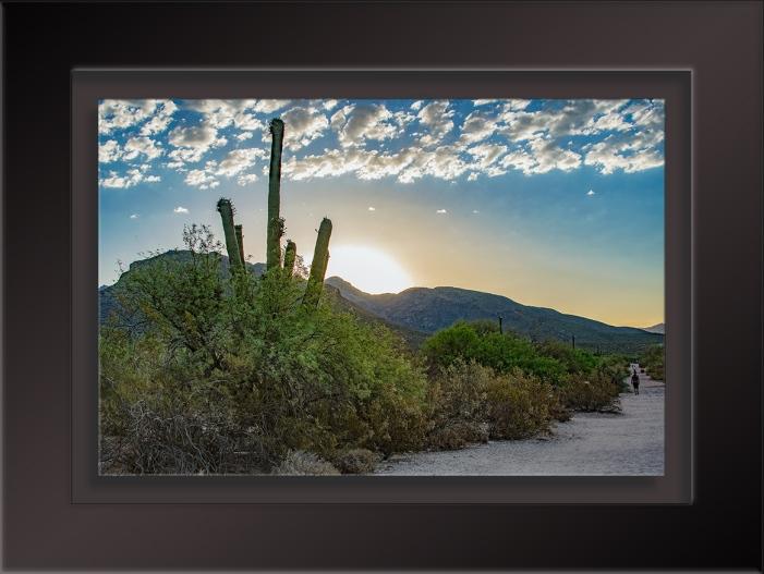 Sabino Canyon Sunrise-1702 blog