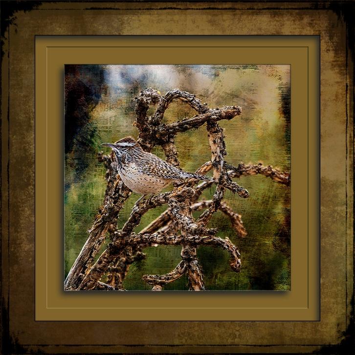 Cactus Wren Grunge Art-0297 blog