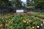 CSU Annual Trail Garden-0225blog