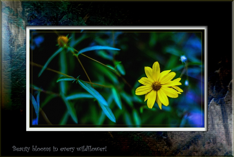 Wildflower (1 of 1) art blog quote