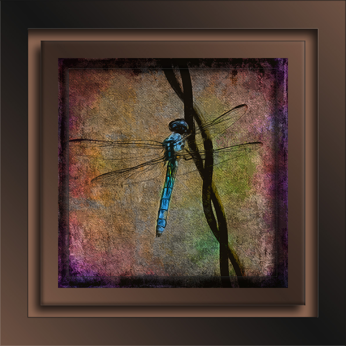 Dragonfly-8071-2 art blog