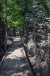 Eastside Park (1 of 1)-23blog