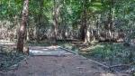 Eastside Park (1 of 1)-7blog