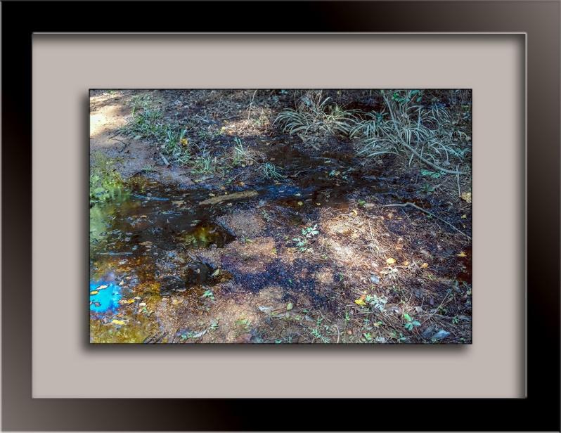 Eastside Park (1 of 1)-9 blog framed